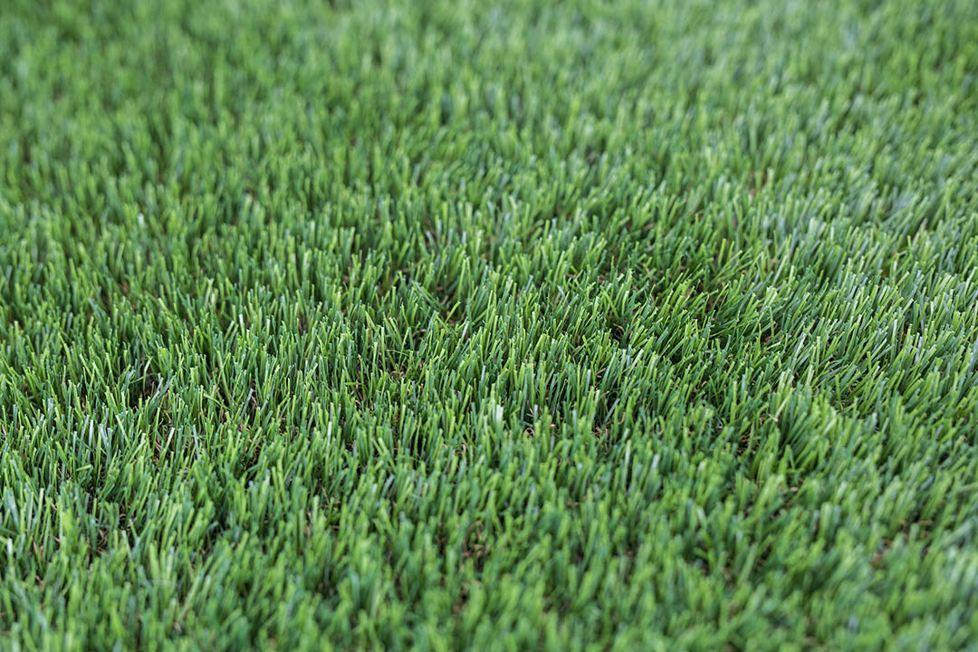 40mm Yorkshire Artificial Grass - Polished Artificial Grass