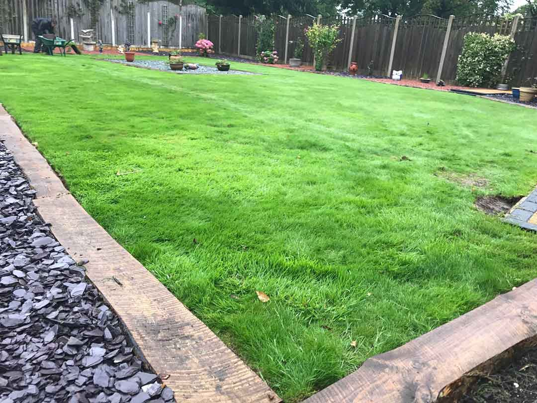 Large back garden harrogate north yorkshire polished for Large grasses for gardens